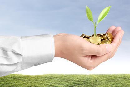 Hand hält eine Pflanze, die aus einer handvoll Münzen wächst green economy